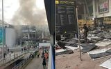Vụ khủng bố Brussels: Bỉ thông báo quốc tang 3 ngày