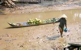 """Bộ Y tế chỉ dẫn """"hô biến"""" nước ao hồ, sông suối thành nước sạch"""