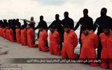 Syria: IS trả tự do cho khoảng 300 công nhân bị bắt cóc