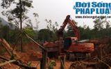 Phớt lờ chỉ đạo của huyện, xã để khai thác đất tràn lan