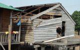 Hơn 200 ngôi nhà ở Gia Lai tốc mái do ảnh hưởng của lốc xoáy
