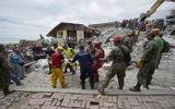 Ecuador: Số người thiệt mạng vượt quá 500, tiếp tục động đất 5,5 độ Richter