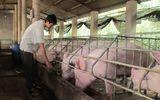 Bộ NT&PTNT: Tỷ lệ vi phạm sử dụng chất cấm tại các trang trại còn rất cao