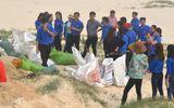 Quảng Bình rốt ráo xử lý hàng chục tấn cá chết dạt vào ven biển