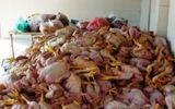 Phân biệt gà ta - gà thải Trung Quốc bằng mắt thường không khó