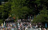 Nhật Bản: Hàng nghìn người biểu tình đòi Thủ tướng Abe từ chức