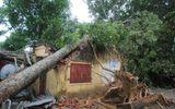 Hà Tĩnh: Một ngôi trường bị đổ nát vì bão số 10