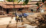 Bộ Công an rầm rộ truy quét gỗ lậu tại Đắk Lắk