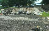 Phú Yên: Gây ô nhiễm môi trường, một công ty giấy bị xử phạt