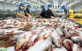 Chuyện cá tra: Vẫn chưa có lời giải giữa doanh nghiệp và người dân