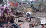 Quảng Bình: Tan tác, hoang tàn sau cơn bão lũ lịch sử