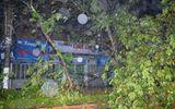 Quảng Ninh: Bão số 14 quật đổ tháp truyền hình Uông Bí