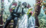 Xem bộ ảnh cưới độc dưới lòng đại dương của cặp đôi chung sống 20 năm