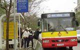 TP.HCM miễn vé xe bus cho người cao tuổi