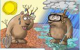 Thế giới mất nghìn tỷ đô do biến đổi khí hậu