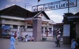 Lâm Đồng: Giám đốc bệnh viện bị côn đồ hành hung