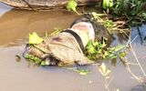 Phát hiện xác chết đang phân hủy trôi sông Tiền