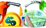 PNJ xuất hiện doanh thu từ hoạt động bán xăng dầu