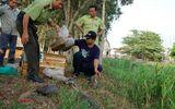 Nhức nhối nạn săn bắt động vật hoang dã ở U Minh Thượng