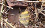Đắk Nông: Quả bom nằm trong rẫy 7 tháng vẫn chờ xử lý