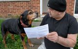 Kỳ lạ: Chú chó được mời đi bỏ phiếu quốc hội