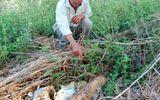Cần có biện pháp xử lý quả đạn pháo tại Đắk Nông