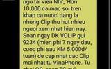 Thủ tướng lên tiếng về vụ clip phản cảm của VinaPhone