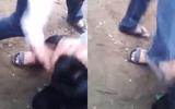 Phẫn nộ nam sinh Thanh Hoá bị đánh hội đồng dã man