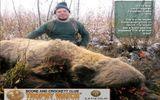 Cận cảnh thợ săn hạ gục gấu xám khổng lồ