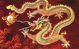 Vì sao thế giới phản đối Trung Quốc?