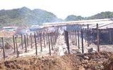 Lò gạch bùng cháy, khu làng nghề bị thiêu rụi