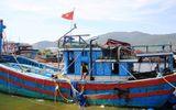 Lập hồ sơ khởi kiện tàu Trung Quốc ngang ngược đâm tàu Việt Nam
