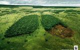 Ứng phó với biến đổi khí hậu - cần thay đỏi tư duy