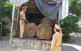 Quảng Bình: Phát hiện xe ô tô tải chở gỗ không rõ nguồn gốc