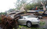 Chùm ảnh  Philippines hứng chịu siêu bão Rammasun