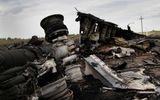 MH17: Hộp đen không thể trả lời tất cả các câu hỏi