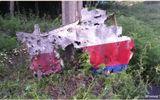 MH17: Bằng chứng cho thấy máy bay Malaysia trúng tên lửa