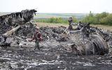 """Các nhà điều tra tránh xa hiện trường MH17 vì... sợ """"ăn"""" đạn"""