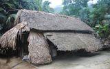 Ước mơ có ngôi nhà tránh mưa nắng của đôi vợ chồng già