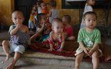 Tin tức mới nhất: Đã có kết luận thanh tra toàn diện chùa Bồ Đề