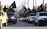 Cố vấn chính phủ Iraq: IS có đến 100.000 chiến binh