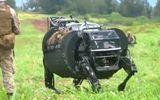"""""""Bò rô bốt"""" chở hàng của quân đội Mỹ leo dốc như bò thật"""