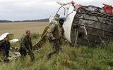 """Kết luận MH17: Máy bay Malaysia rơi do trúng """"các vật thể lạ"""""""