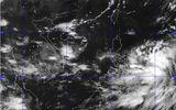 Bão Kalmaegi dần mạnh thêm, gió giật cấp 9