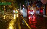 Hà Nội: Cây đổ ngổn ngang sau bão số 3