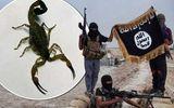 IS đánh bom bọ cạp sống gieo rắc kinh hoàng tại Iraq