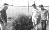 Hà Nội: Nam thanh niên bị đâm chết trên đoạn đường vắng