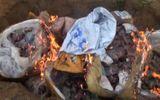 Bắt giữ và tiêu hủy nội tạng bốc mùi từ đất Bắc vào Nghệ An tiêu thụ
