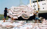 Chính phủ yêu cầu đẩy mạnh xuất khẩu gạo