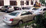 Bình Định bán đấu giá 8 ô tô bị tịch thu để sung công quỹ